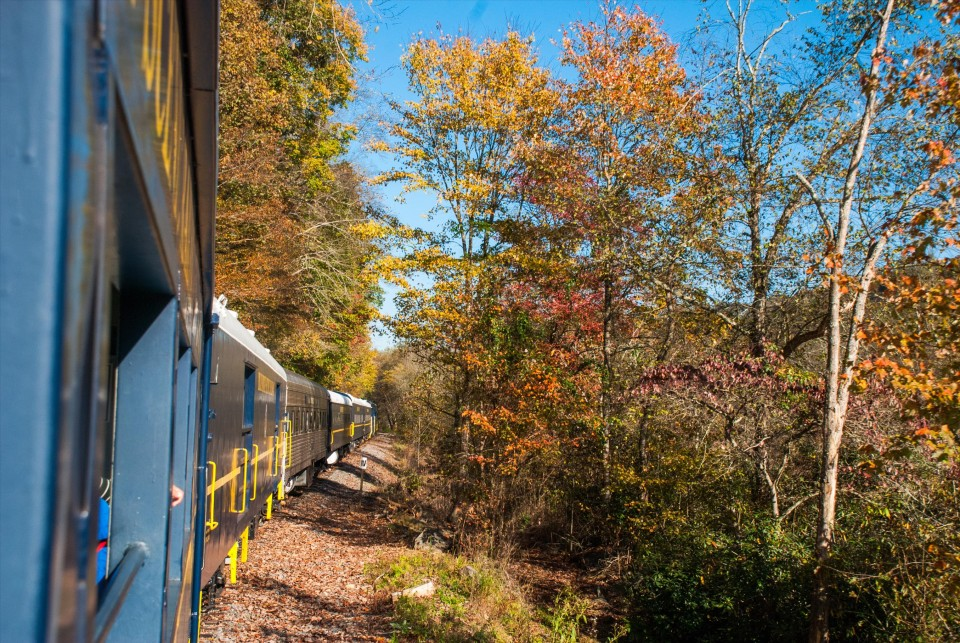 Spring and Fall Delight on the Blue Ridge Scenic Railway