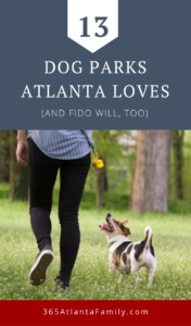 Dog Parks!! We've compared notes with other Georgia dog lovers and compiled a list of favorite dog parks Atlanta, Georgia canine's and you will love.